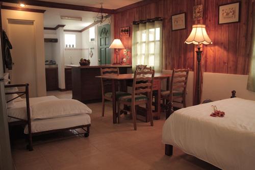 Cottage Amaryllis 7