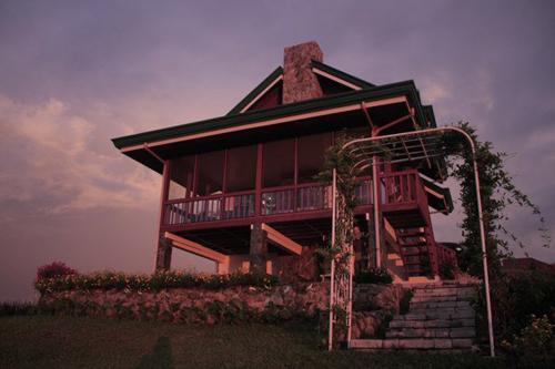 Cottage Hydrangea 18