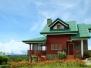 Cottage Hydrangea