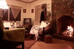 Cottage Hydrangea 8