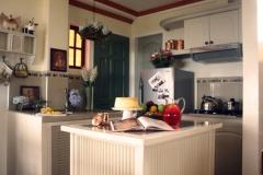 Cottage Hydrangea 4