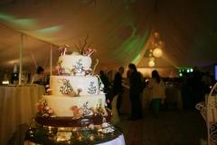 Wedding 28