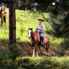 Horseback Riding1